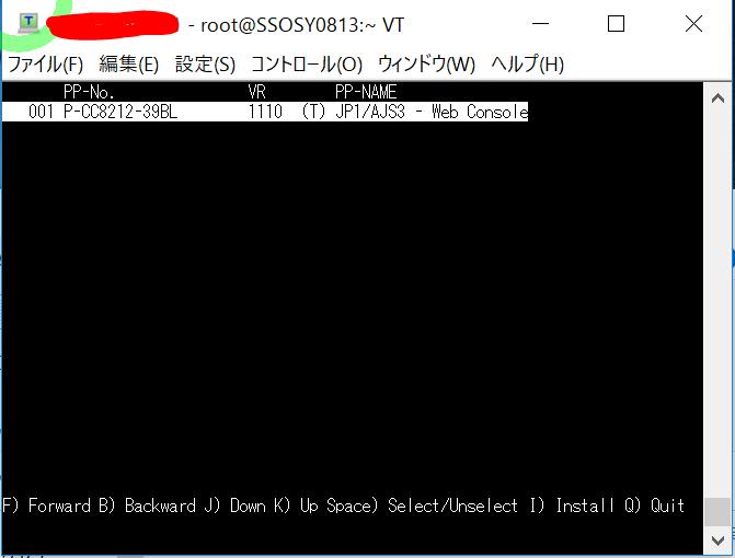 IT0025_(5-1)_3_SV1_WebInstall